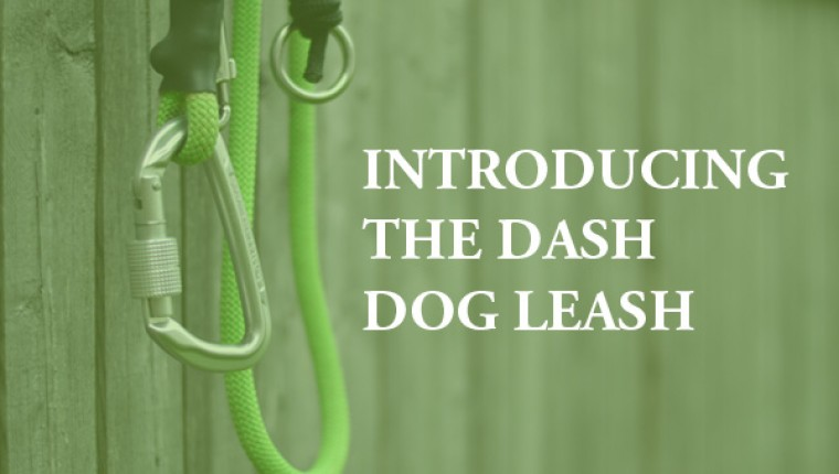 Making the ultimate dog running leash